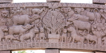 Buddha worshipped by animals in the jungle