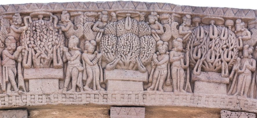 Trees of Manushi Buddhas