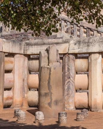 Pillar 10 - Ashoka's Pillar