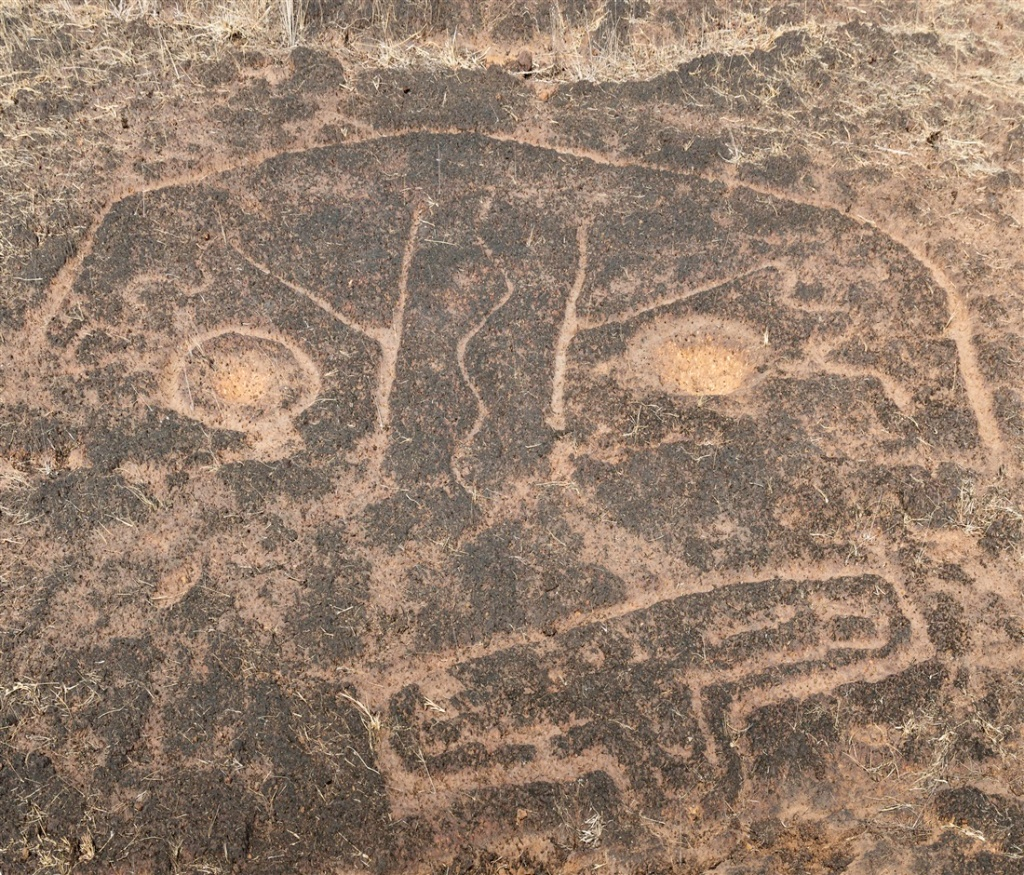 Head carving ? -  Ukshi petroglyphs