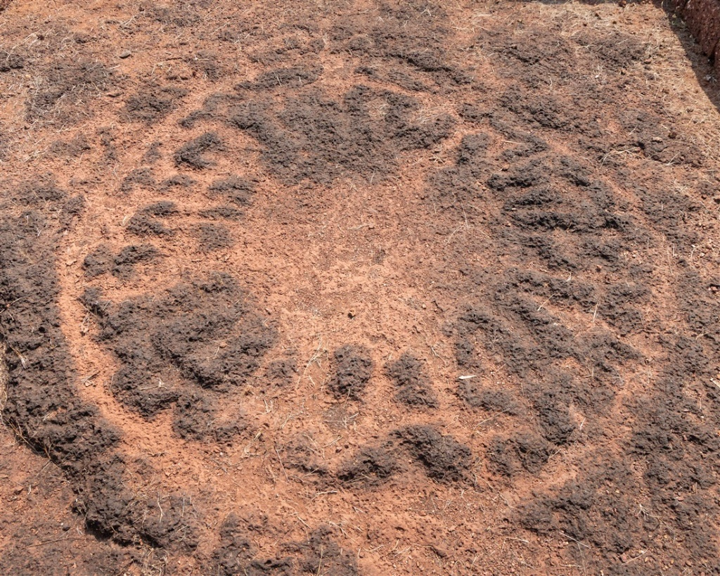 Abstract turtle - Niwale petroglyphs