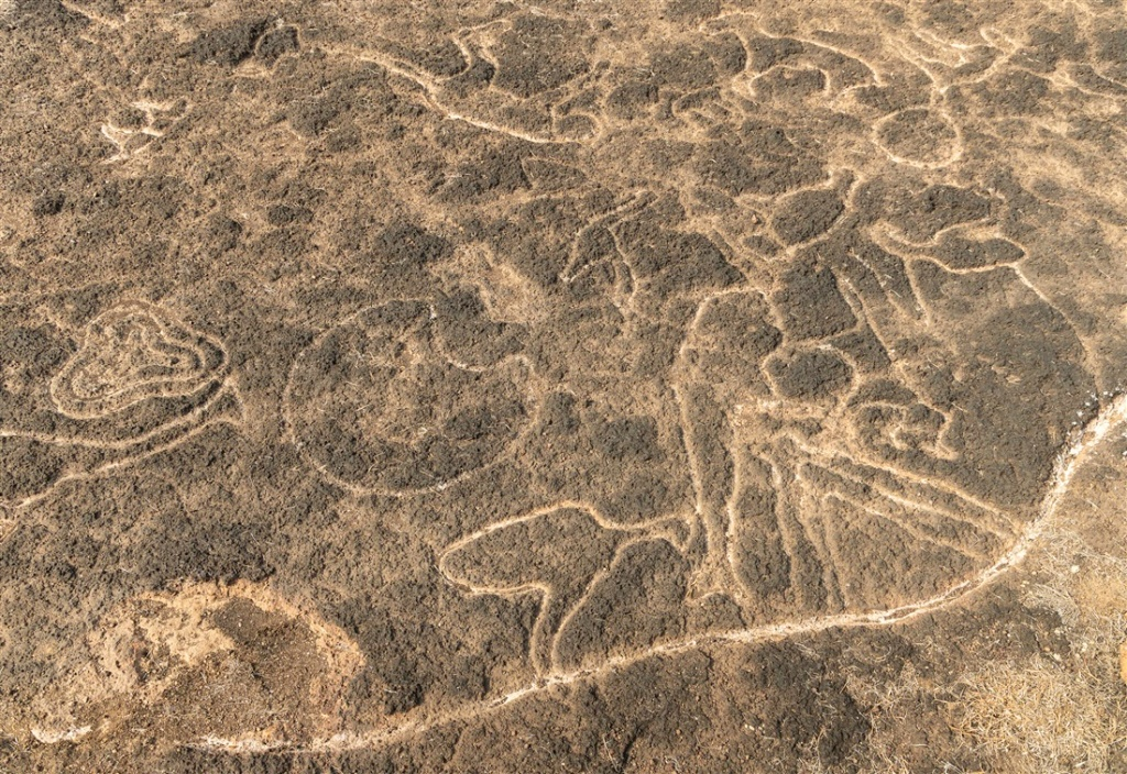 Birds, deer, elephant head, and much much more - Kasheli petroglyphs
